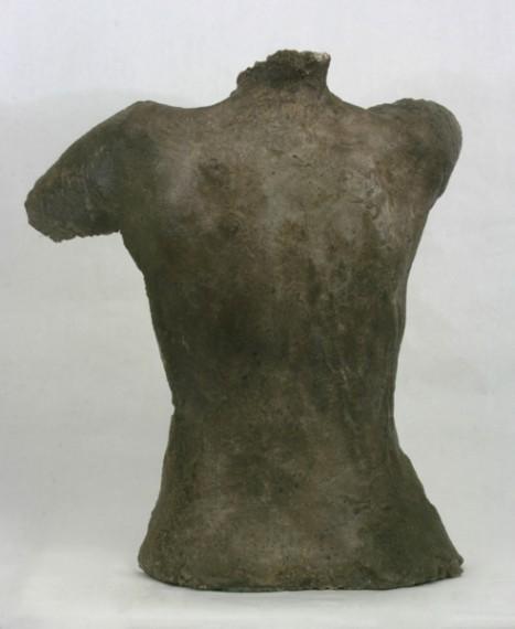 Torso (back)